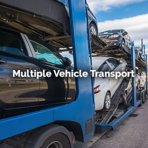 multiple vehicle transport