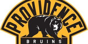 Providence Bruins hockey